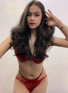 FEMININELOOK Available for CAMSHOW - Transsexual escort in Manila Photo 11 of 23