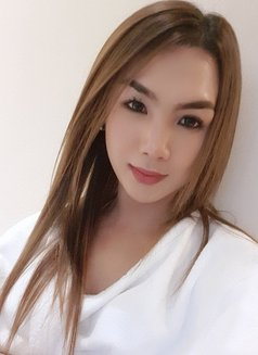 YOUNG PornStar TS AICO just landed - Transsexual escort in Angeles City Photo 19 of 27