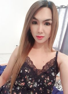 YOUNG PornStar TS AICO just landed - Transsexual escort in Angeles City Photo 25 of 27