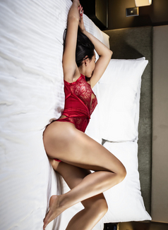 Genies Escorts - escort agency in Sydney Photo 8 of 12