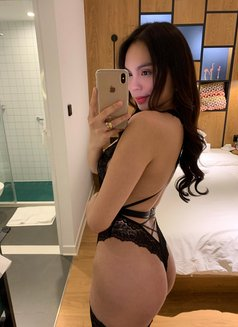 Gorgeous Ashley <3 - Transsexual escort in Seoul Photo 29 of 30
