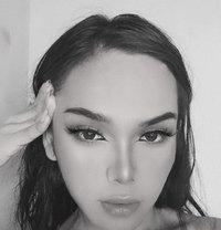 HeavenlyTreats JOI (Avail. Camshow) Bdsm - Transsexual escort in Manila