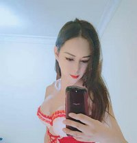 High Class Queen Sexy Hot Big Lili - Transsexual escort in Doha