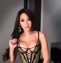 privategirlsescorts high class asian escort Victoria