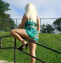 Holly - escort in Dartmouth
