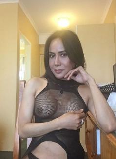 Big C0ck Top Shemale - Transsexual escort in Jakarta Photo 3 of 9