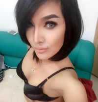 Hotties Ladyboy Alice - Transsexual escort in Dubai