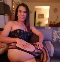 "LADYBOY MASSEUR PROFESSIONAL ""CD"" VERSA - Transsexual escort in Dubai Photo 8 of 26"