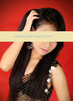 Jakarta Top Escort - escort agency in Jakarta Photo 13 of 14