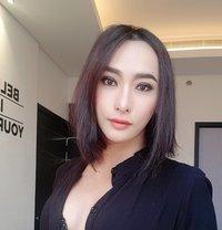 Jesica Cambodia - Transsexual escort in Bangkok