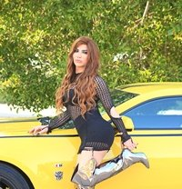 Jiji / Lebaneese / cam show / - Transsexual escort in Riyadh
