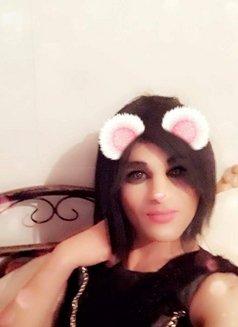lululadyboy - Transsexual escort in Amman Photo 3 of 3