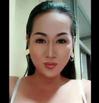 Gabby - Transsexual escort in Phnom Penh