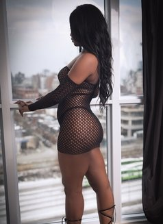 Katalina - escort in Toronto Photo 2 of 2