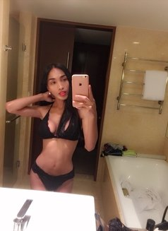 Kendall - Transsexual escort in Manila Photo 14 of 26
