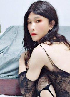 Kitty in Xiamen - Transsexual escort in Shanghai Photo 2 of 6