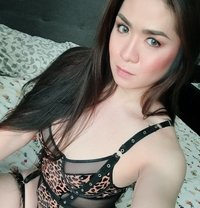 Lady Boy Kimmy - Transsexual escort in Kuala Lumpur