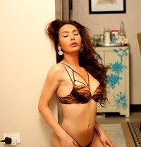 Ladyboy Icon - Transsexual escort in Osaka