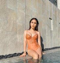 Ladyboy Miiyabii | XXX Videos - Transsexual escort in Bangkok