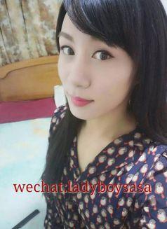 Ladyboy Sasa - Transsexual escort agency in Beijing Photo 7 of 30