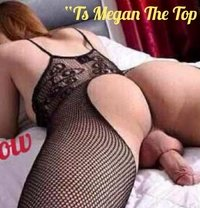Ts Megan Top/Bottom CamShow Live - Transsexual escort in Makati City