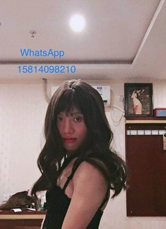 Ladyboy venus now - Transsexual escort in Shanghai Photo 5 of 12