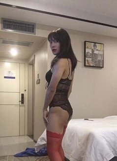 Ladyboy venus now - Transsexual escort in Shanghai Photo 7 of 12