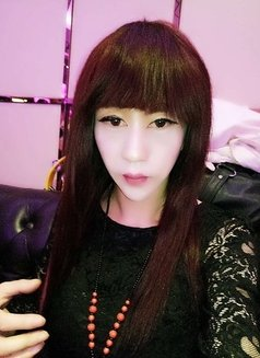 CHINA hot sexyLadyboymeina - Transsexual escort in Beijing Photo 1 of 12