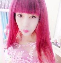 CHINA hot sexyLadyboy - Transsexual escort in Beijing