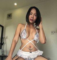 🇭🇷 FUNCTIONAL PINAY tsBONITA 🇵🇭 - Transsexual escort in Manila