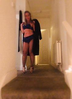 Lauren Brazilian New in Uk - escort in London Photo 4 of 6