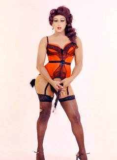 Mistress Leona - Genuine Gentlemens Only - Transsexual escort in Colombo Photo 16 of 29