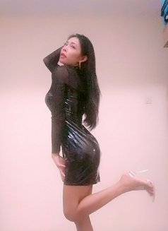 Linda Shemale Hot - Transsexual escort in Jakarta Photo 5 of 6