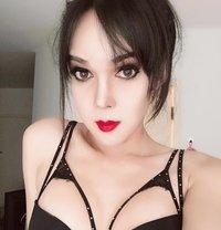 Zeya big cock - Transsexual escort in Bangkok