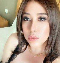 Louissa - Transsexual escort in Jakarta