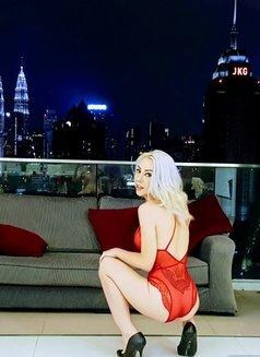 Lucia castro TOP VIP ESCORT - escort in Singapore Photo 13 of 17