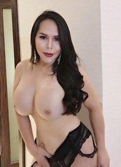 LucieTs.....For Pleasure Seekers - Transsexual escort in Dubai Photo 4 of 12