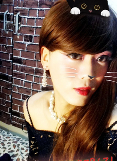 Lulu is waiting for you in Shanghai - Transsexual escort in Shanghai Photo 16 of 19