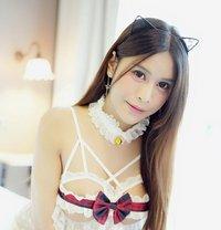 Maki - Transsexual escort in Bangkok