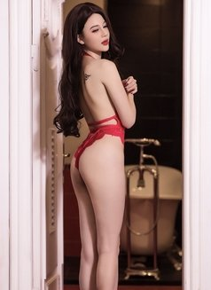 young and sexy lady nancy - escort in Dubai Photo 10 of 12