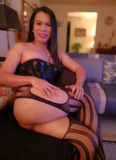 LADYBOY WEBCAMSHOW ONLY - Male escort in Dammam Photo 1 of 11