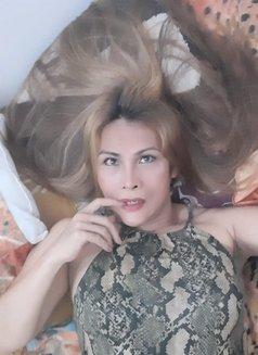 ts brigitte ready in jakarta - Transsexual escort in Jakarta Photo 29 of 30