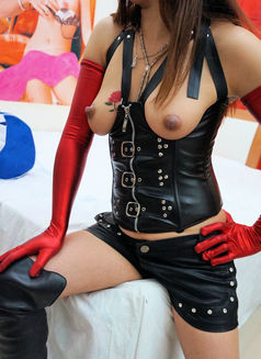 Sandra BDSM Services - escort in Amsterdam Photo 1 of 6