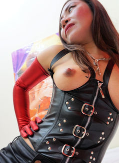 Sandra BDSM Services - escort in Amsterdam Photo 4 of 6