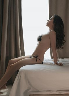 Mia Malaysia Full Service - escort in Dubai Photo 1 of 14