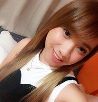 Ts Mickaliciousz - Transsexual escort in Manila