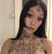 Ming Li - Transsexual escort in Berlin