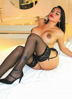 Mishell Goddess Latin - Transsexual escort in Singapore Photo 5 of 10