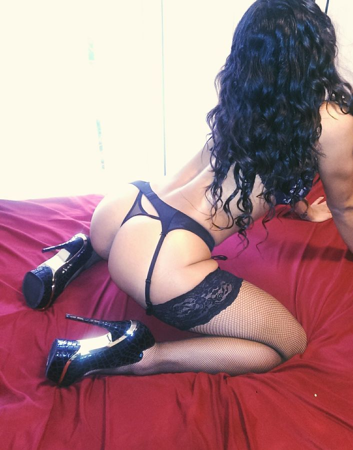 Bbw escorts toronto Escorts in Toronto, Independent call girls and escort agencies in Canada