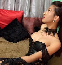 MistresElegant(WantedSubLuvr)Independent - Transsexual escort in Taipei